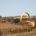 Corn Silage Cropping