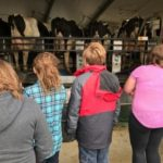 4th Grade Ag in the Classroom Visit - May 19, 2017